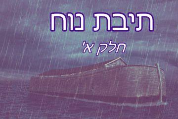תיבת נוח – שלב 1
